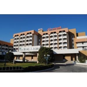 Гостиница Афросиаб Палас