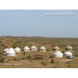Юртовый лагерь Сафари